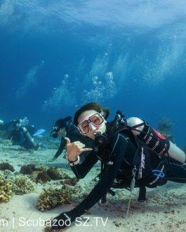 Student Dive